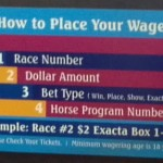 Wagering to make money, or at least have as much fun per dollar as possible