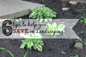 save on landscaping