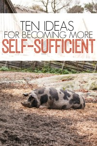 Being self-sufficient provides you with such an amazing sense of accomplishment and can help save money! Here are ten ideas for more self-sufficient living.