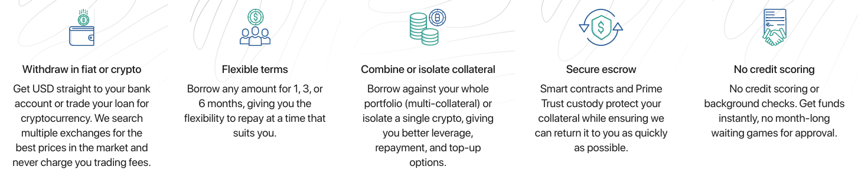 MyConstant borrowing